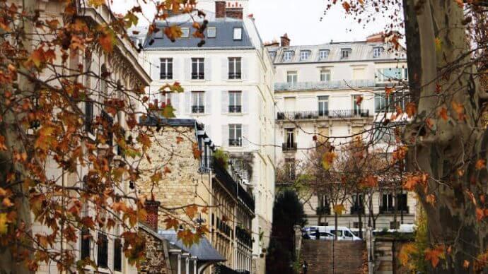 Blick auf eine Treppe in Paris mit Herbstzweigen