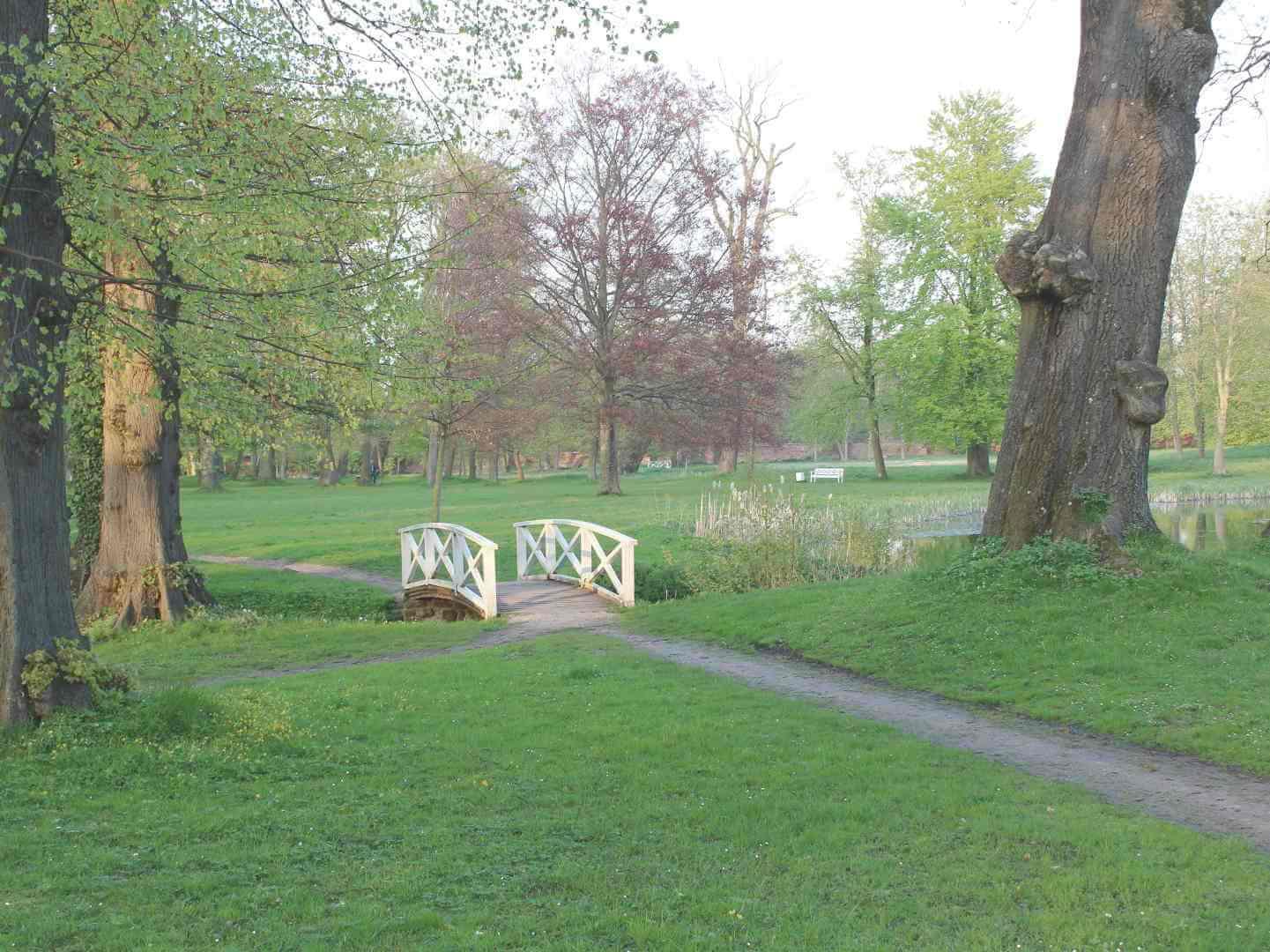 Blick auf Brücke im Klosterpark in Bad Doberan