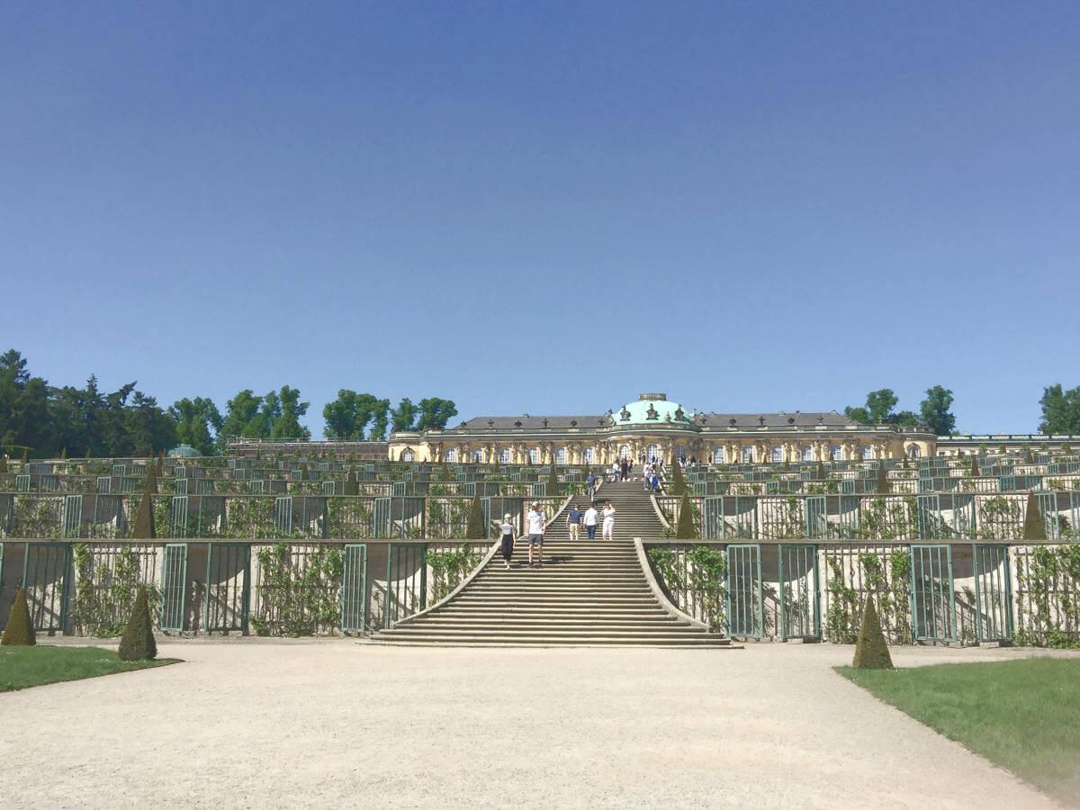 Blick auf Weinberg mit Treppe zum Schloss Sanssouci in Potsdam, Brandenburg