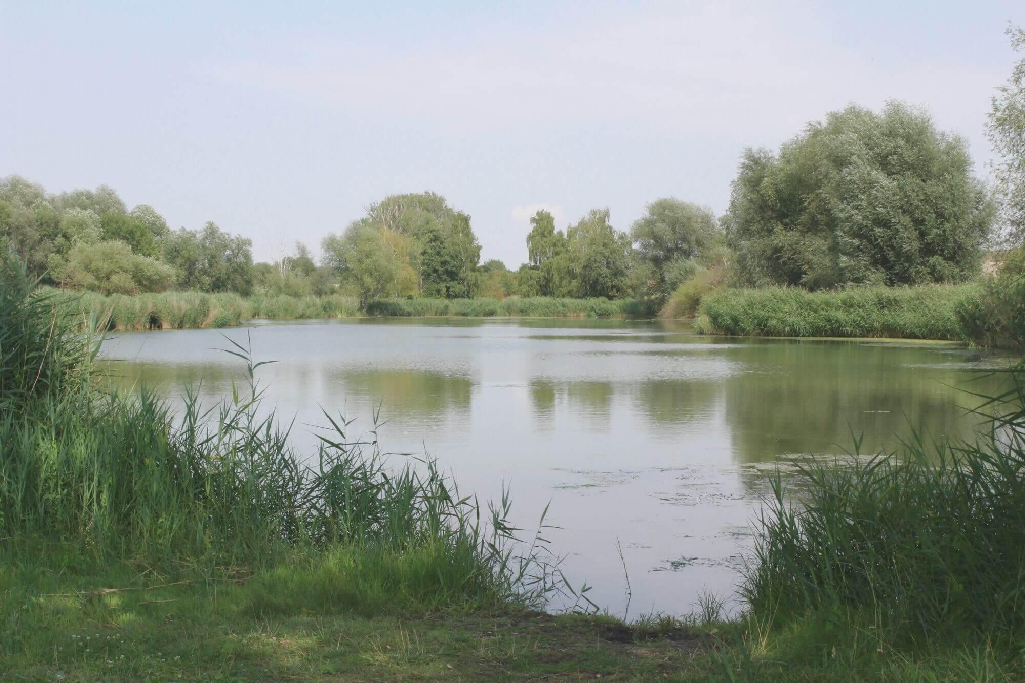 Opfermoor Voigt in der Welterberegion Wartburg-Hainich in Thürignen