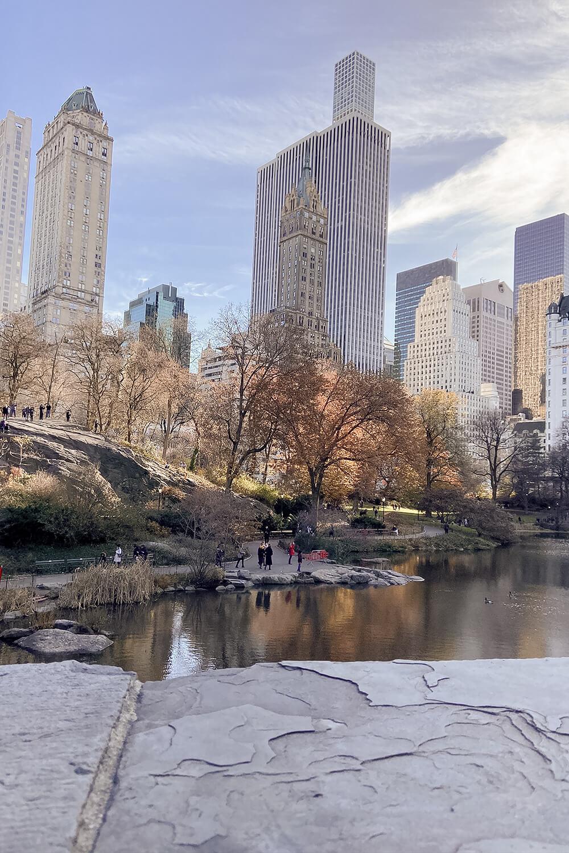 Blick auf die Manhattan Skyline vom Central Park