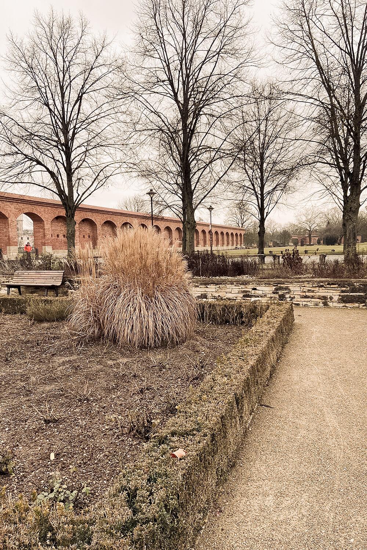 Klenzepark Ingolstadt im Winter