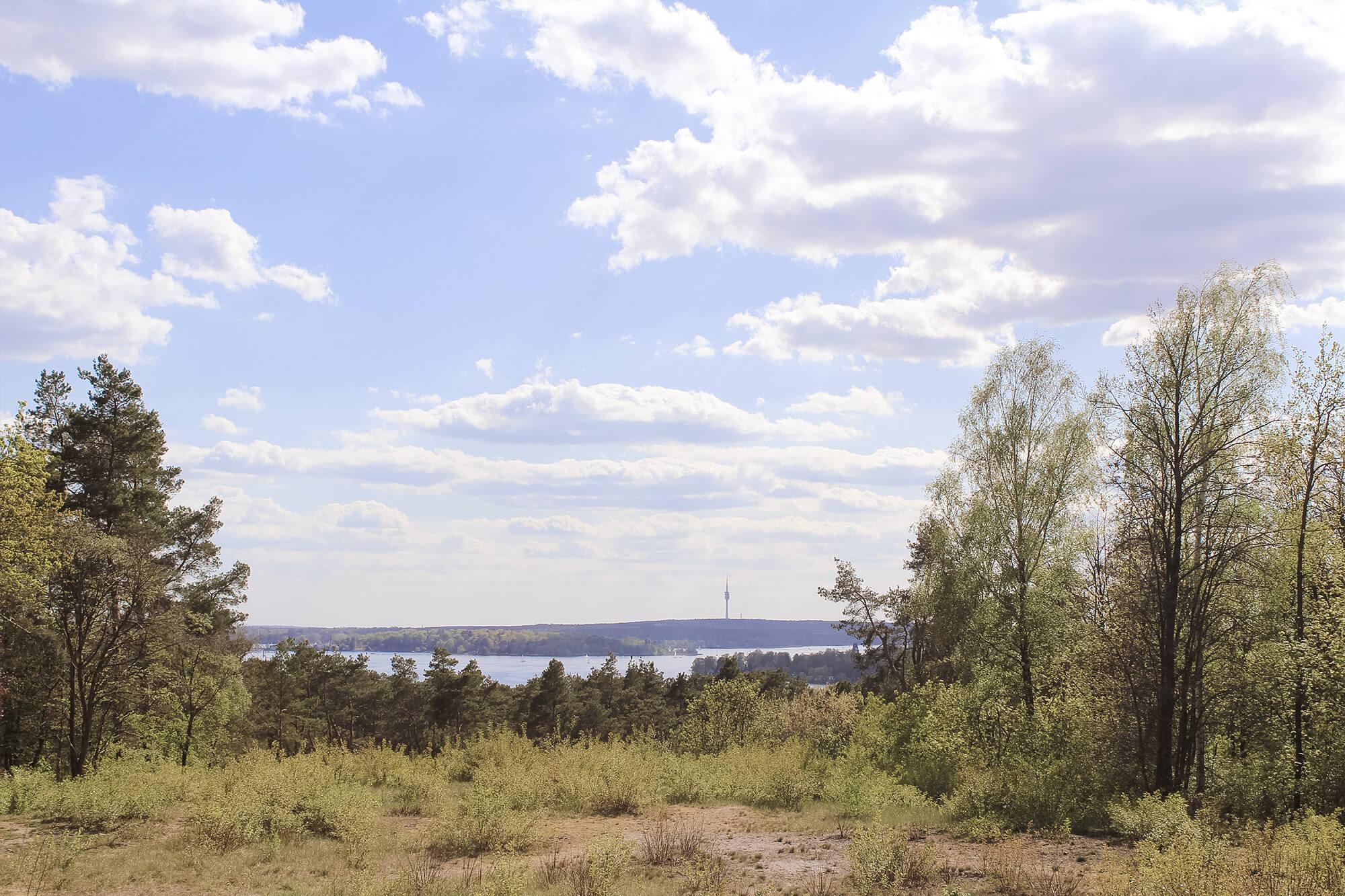 Ausblick vom Grunewaldturm