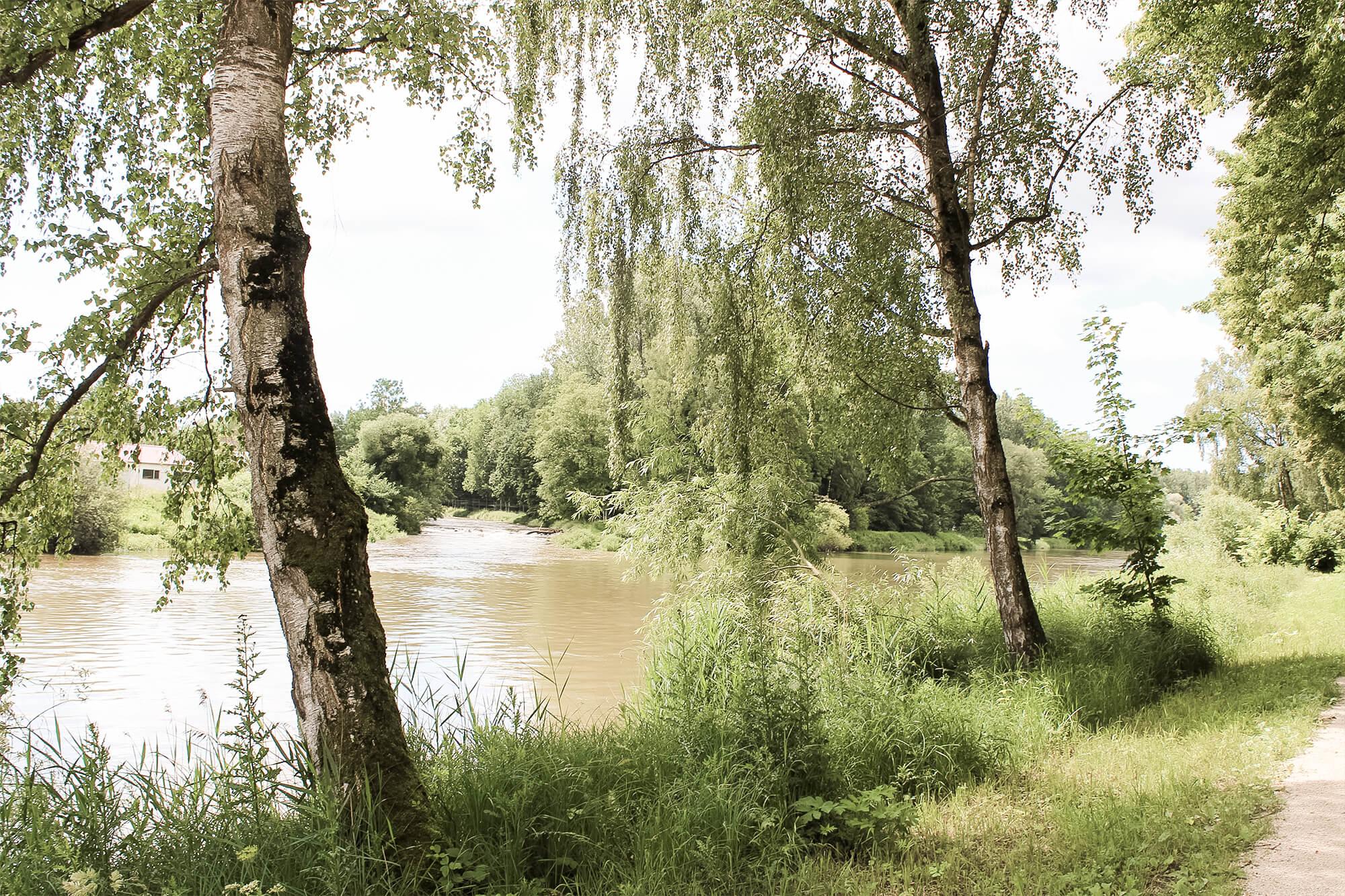 Donau an der Naumündung bei Günzburg