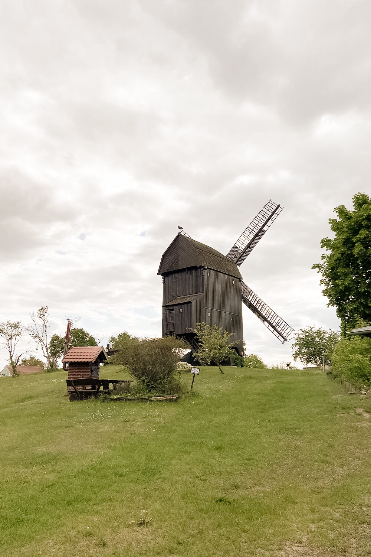 Windmühle in Werder an der Havel