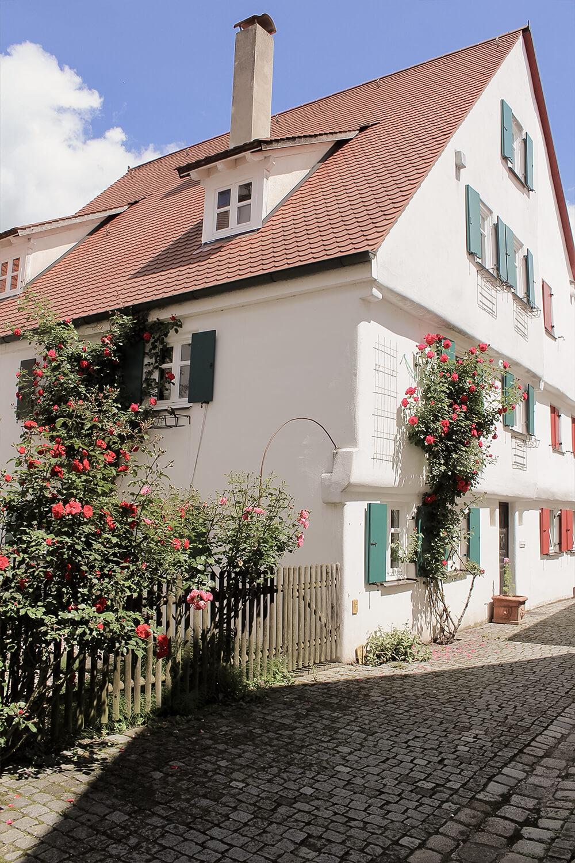 Rosengarten Münzgasse Günzburg