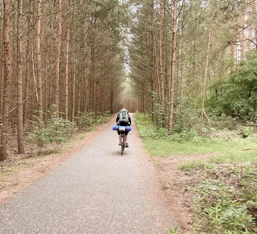 Fahrrad auf dem Berliner Mauerweg durch den Wald
