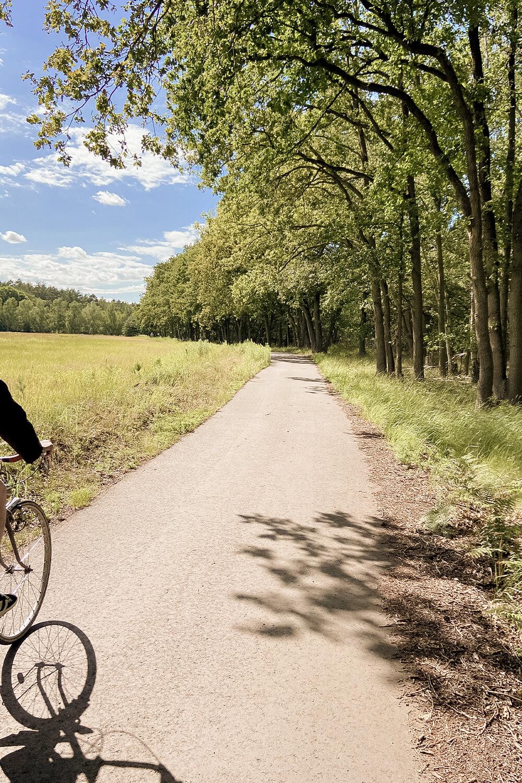 Berliner Mauerweg mit dem Fahrrad