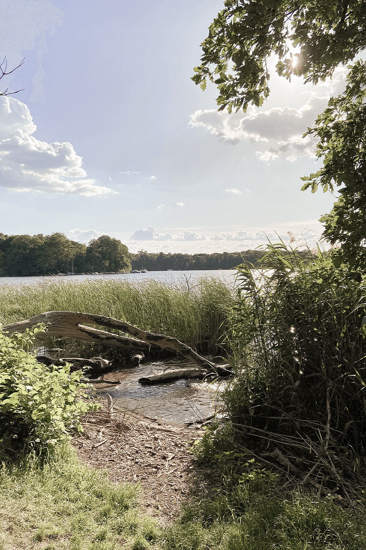 Blick vom Ufer auf den Tegler See
