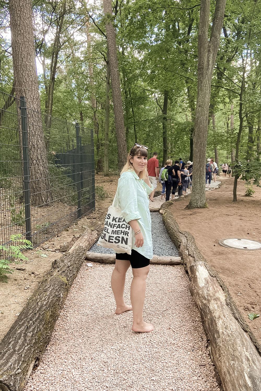 Start Roter Weg im Barfußpark Beelitz