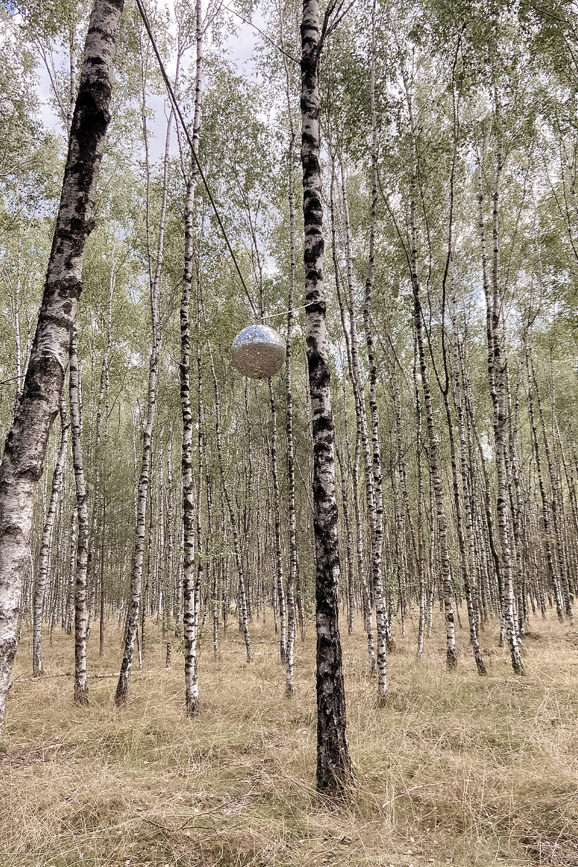 Diskokugel im Wald im Barfußpark Beelitz