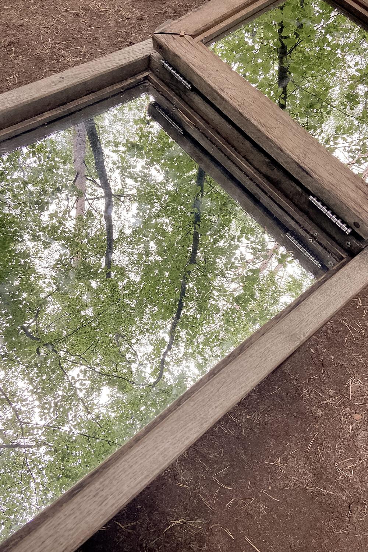 Waldspiegel im Barfußpark Beelitz