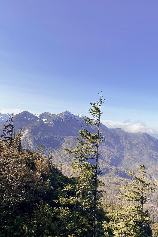 Blick auf die Zugspitze vom Kochberg