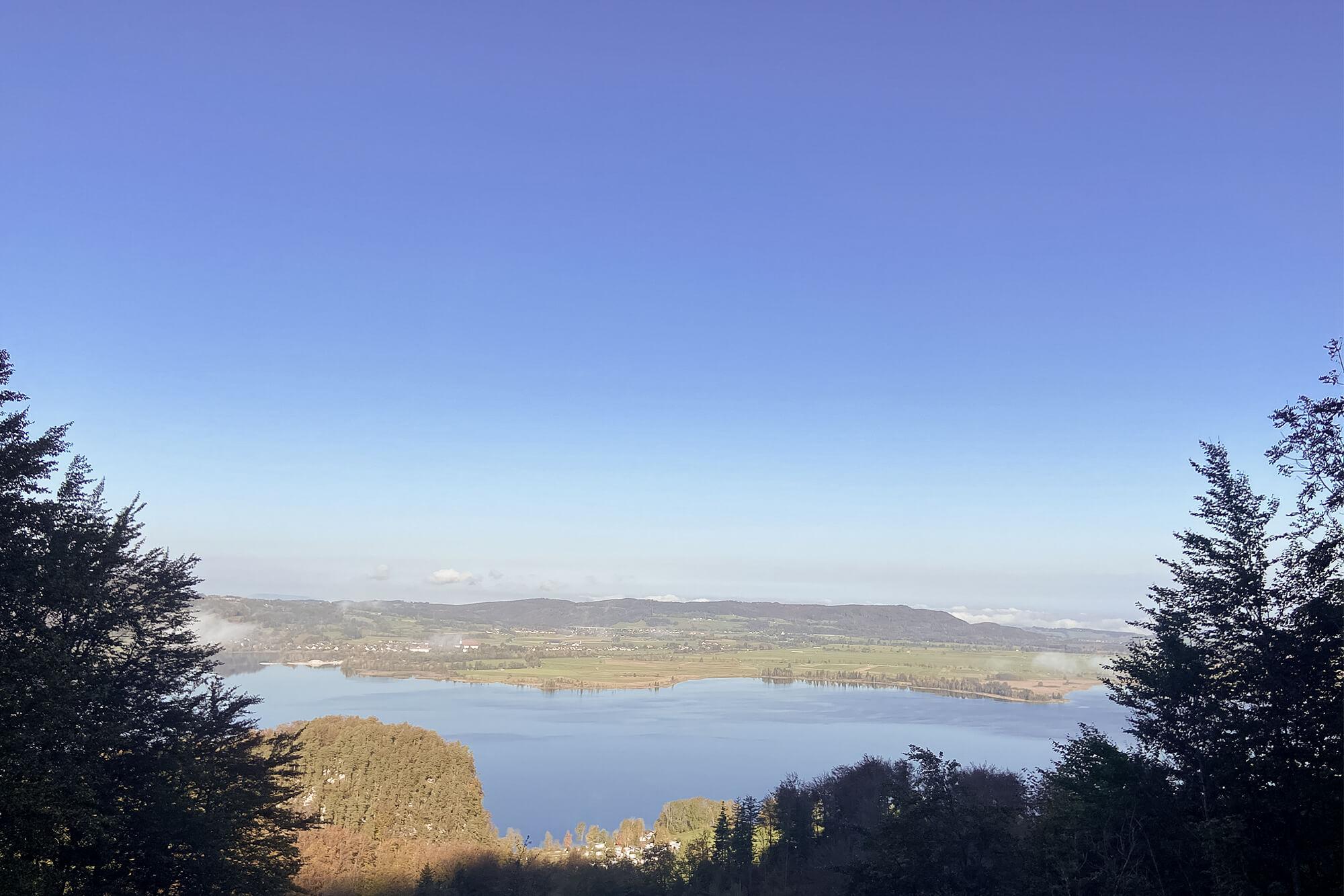 Ausblick vom Jochberg auf den Walchensee
