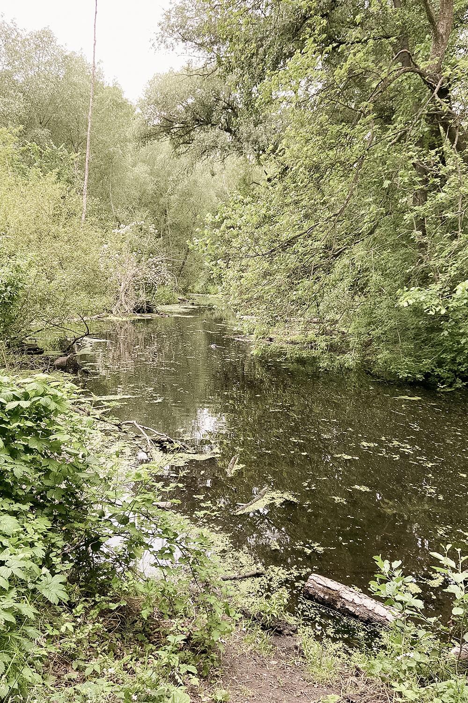 Fluss Tegeler Fließ