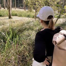 Blick in den Sumpf des Briesetals