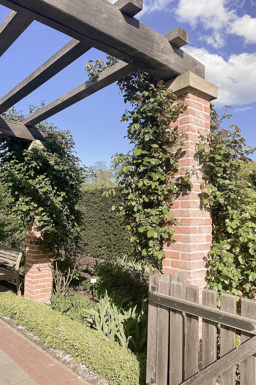 Terrasse im Englischen Garten