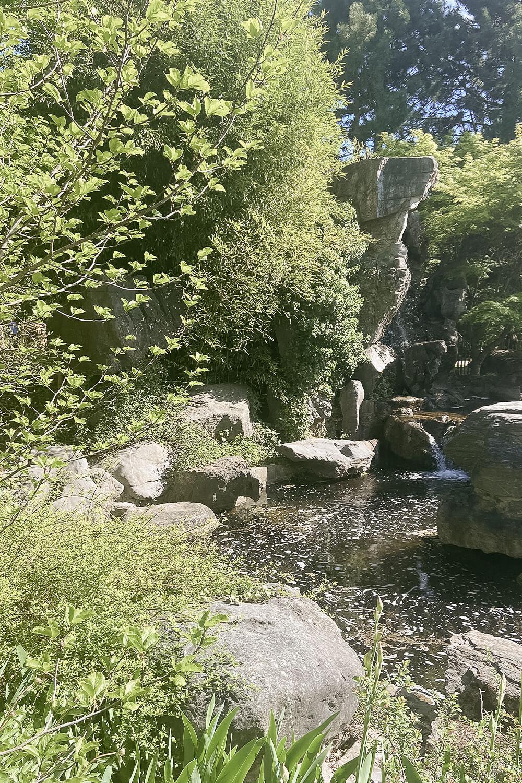 Teich im Chinesischer Garten