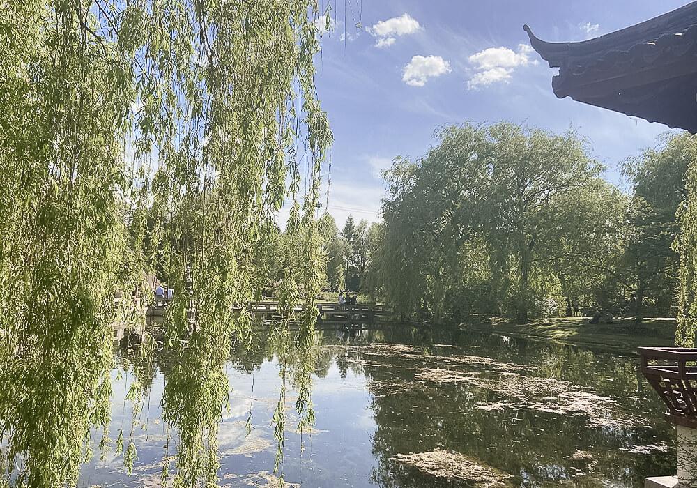 See im Chinesischen Garten in den Gärten der Welt