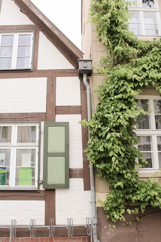 Altstadthaus in Greifswald