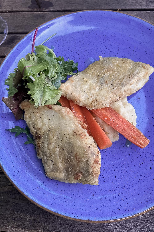Zanderfilet mit karamelisierten Karotten auf Kartoffelpüree an Salat im Lindwerder