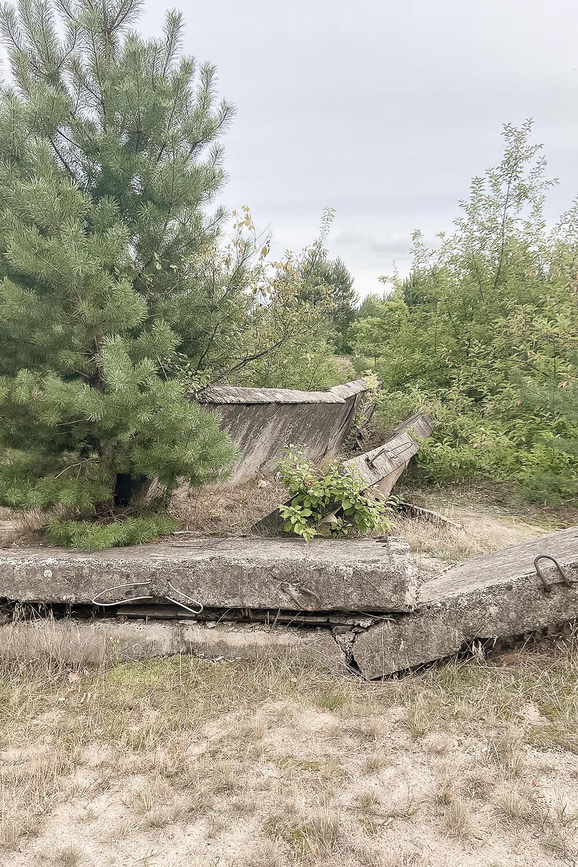 Bunkerruine in der Schönower Heide