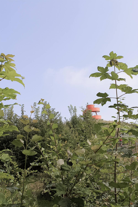 Blick auf einen Haldenturm in Hamm