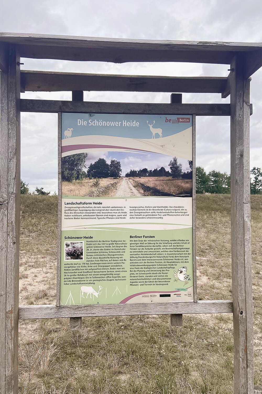 Infoschild in der Schönower Heide