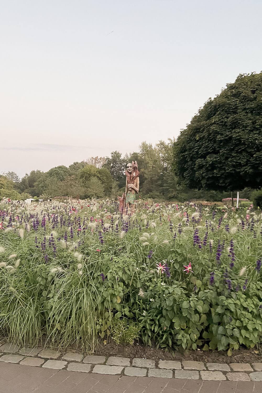 Blumenfeld im Statuen im Maximilianpark in Hamm